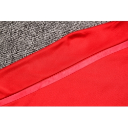 Спортивные костюмы bayern munich 2018 2019 красный